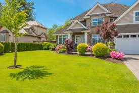 landscaping tips and trends for 2016 dan clayton homes guelph