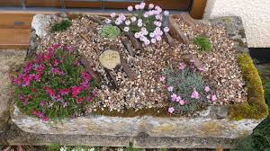 Alpine Rock Garden by Making An Alpine Crevice Garden And What Happened Next Youtube