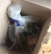 flower deliveries s day disaster as interflora flower service and moonpig