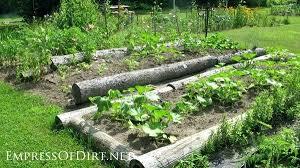 Veggie Garden Ideas Vegetable Garden Border Ideas Hydraz Club