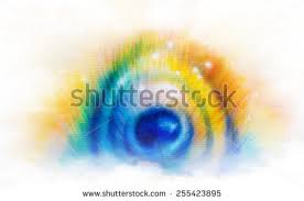 peacock painting stock images royalty free images u0026 vectors