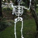 scout the skeleton dog halloween pinterest esqueletos de