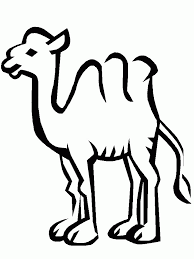 coloring page camel coloring pages 17979 bestofcoloring com
