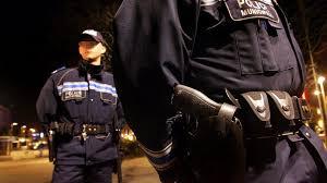 abat jour toulouse toulouse la police municipale abat le chien qui mordait un sdf