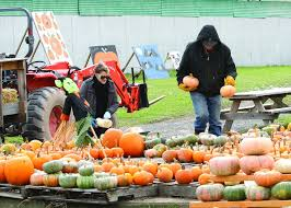 halloween city geneva ny business of the week meadeville farm pumpkin patch news