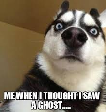 Meme Saw - meme maker me when i thought i saw a ghost