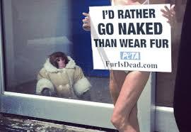 Ikea Monkey Meme - 15 funniest ikea monkey pics pophangover