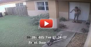 boxer dog kills man video cowardly cop knocks on innocent family u0027s door kills their