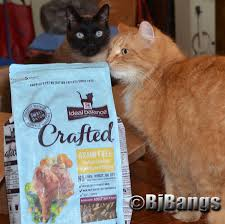 inspiredbycrafted cats enjoy slow cooked food in small batches