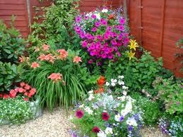 Imagenes De Jardines Pequeños Con Flores | flores para jardines pequeños para más información ingresa en