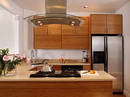 Bamboo Cabinets Kitchen Bamboo Kitchen Cabinets The Bamboo Kitchen Cabinets