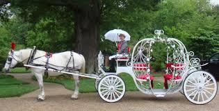pumpkin carriage carriage rides hton roads norfolk williamsburg