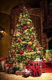 classic tree shop décor at bombay company www
