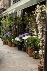 681 best flower shops images on pinterest flower shops flower