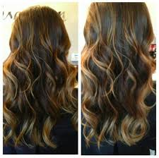 curly hair with lowlights purple highlights on dark brown curly hair hairstyle picture magz