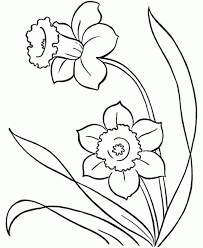 simple flower coloring pages home colouring pictures plants easy