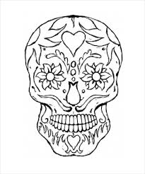 skull drawing template