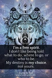 best 25 free spirit quotes ideas on free spirit free