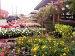 Oklahoma City Botanical Garden by Oklahoma City Farmer U0027s Market U2013 Farmer Market Visit 1 Dishin