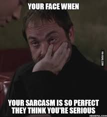 Sarcastic Meme Face - your face when your sarcasm is so perfect they think you re serious