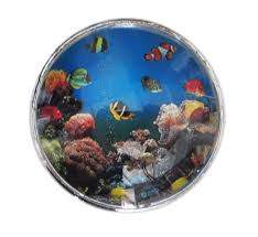 ocean fish glass knob with metal base for dresser drawers cabinet