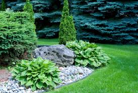 Best Trees For Backyard by Marvelous Trees For Backyard Landscaping Part 2 Marvelous Trees