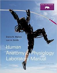 Human Anatomy And Physiology 8th Edition Solution Manual For Human Anatomy U0026 Physiology Laboratory Manual