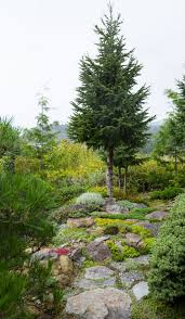 it u0027s a great garden if you like hiking and views u2014 or you u0027re a