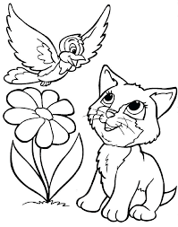 coloring page of a kitty kitty coloring pages kitty coloring sheet cat color page kitten