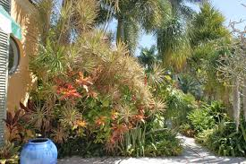 tropical garden design tropical landscape miami by www