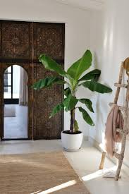 15 best cal reiet guest houses images on pinterest design