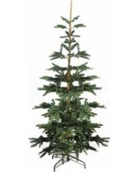 sweet deal on 6 5 layered noble fir artificial tree