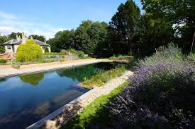 swimming pool nature garden pools and swimming ponds design idea