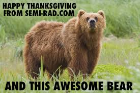 happy thanksgiving from semi rad semi rad