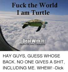 Fuck The World Memes - fuck the world i am turtle deal with it facebookcomummahhh hay