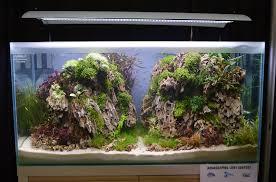Aquascape Com Aquascaping Live 2016 Large Tank Entries U0026 Results