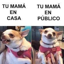 Memes Mama - meme tu mama en casa y en publico memes en internet crear meme com