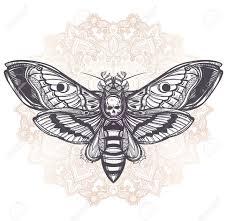 cool mandala butterflies design beautiful tattoos cool mandala