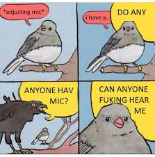 Meme Bird - best 30 bird meme fun on 9gag