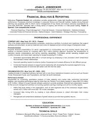 Job Profile In Resume by Traditional Resume Examples