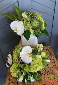 florist naples fl 24 best blooms naples by steven bowles creative images on