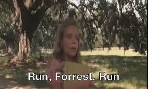 Run Forrest Run Meme - forest gifs tenor