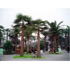 china fan palm tree china fan palm tree shopping guide at alibaba