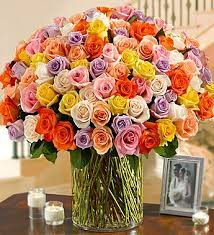 multicolored roses 100 premium stem multicolored roses in a vase nancy s floral