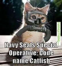 Navy Seal Meme - 140 best military memes images on pinterest funny stuff