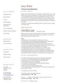 Visual Resume Examples by Download Visual Merchandising Resume Sample Haadyaooverbayresort Com