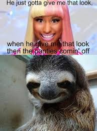 That Look Meme - nicki sloth sloths know your meme