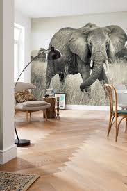 African Themed Home Decor by Best 25 Elephant Home Decor Ideas On Pinterest Elephant Room
