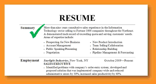 Areas Of Expertise Resume Examples Resume Title Examples For Entry Level Resume Headline Samples