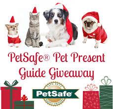 457 best pet websites blogs images on pet